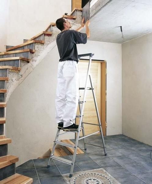 Z200 Zarges Stufen-Stehleiter genietet u. eloxiert